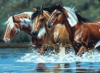 COLART 86231 HEADING UPSTREAM HORSES IN RIVER ACRYLIC PAINT BY NUMBER (12 PULGX16 PULG)
