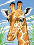 COLART 86313 GIRAFFE (HEAD) ACRYLIC PAINT BY NUMBER (9 PULGX12 PULG)