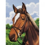 COLART 86306 HORSE HEAD ACRYLIC PAINT BY NUMBER (9PULGX12PULG)